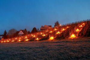parafínové sviečky